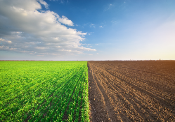migrating to the cloud: choosing between greenfield and brownfield image