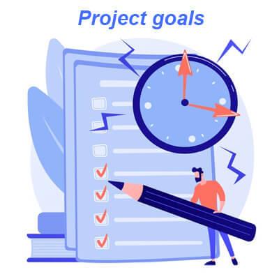 Dedicated Engineering Team - Project Goals